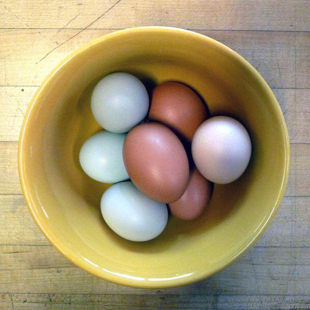 eggsliz