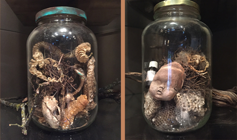 Jars of found nature objects on my bookshelves